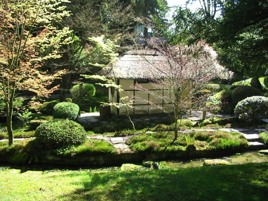 Japanese garden Tatton Park Nationaltrust