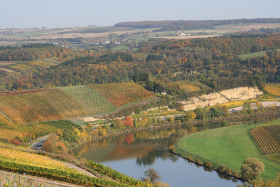 reflectionthursday landscape autumn moselle luxembourg