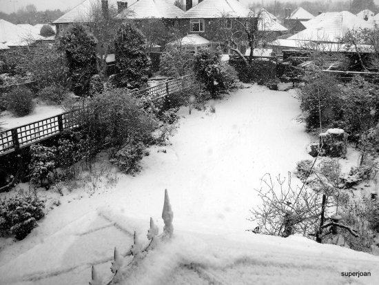 Todays weather at last snow