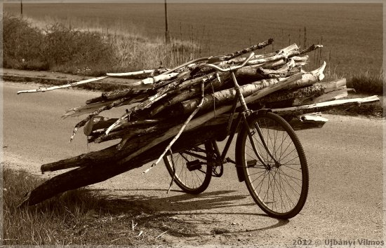 street road field bike lumber wood branch monochrome