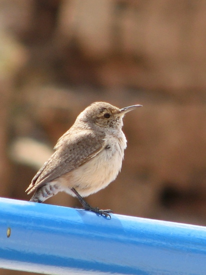 Which is my better side?