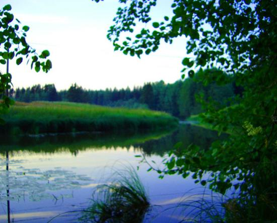 finland countryside summer river