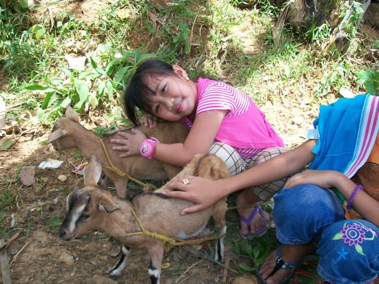 April 15 2011 At Mantapi farm Bday of nanay Edna ylleah likes goat