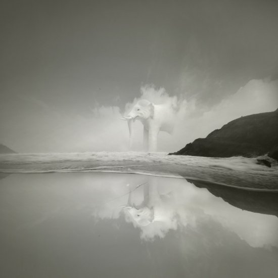 surreal dream waterscape ireland white elephant reflection unreal fantasy keit