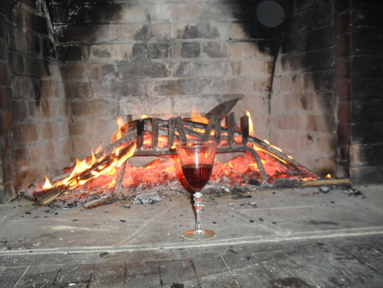 Fire and wine are two true friends why still warm my solitude