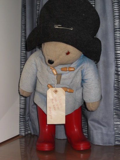 teddybearfriday Paddington