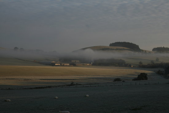 scotlad scenic countryside frost frosty morning fields