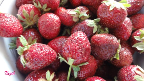 nezihmuin travel turkiye bozyazi tekmen fruit strawberry