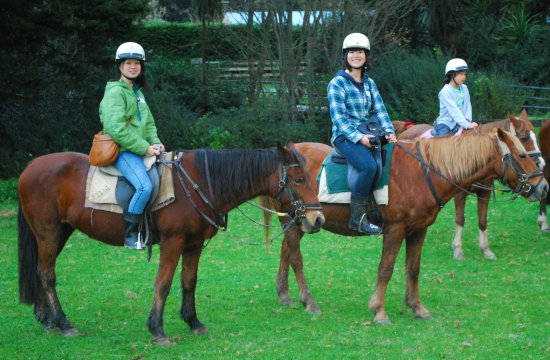japan girls horseriding warkworth horses