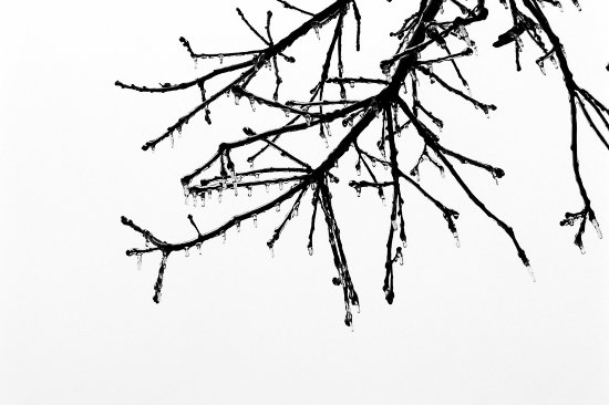 ice icestorm freezingrain macro