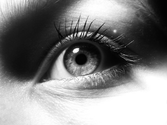 eye blackandwhite lashes macro