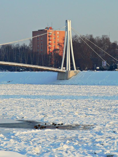 Osijek Croatia bridge ice ducks