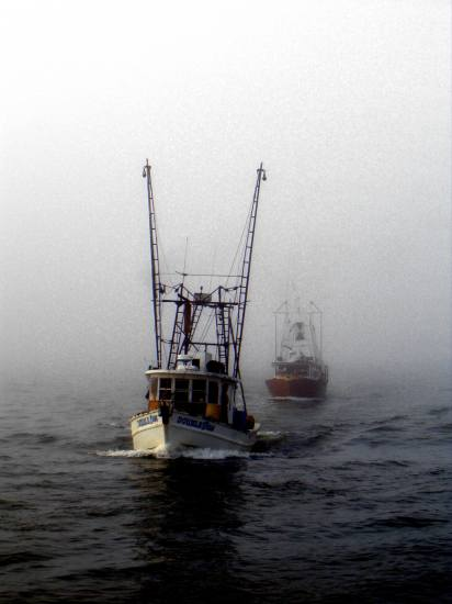 oyster comin fog pass christian harbor shrimp boats Pankey Wildspirit