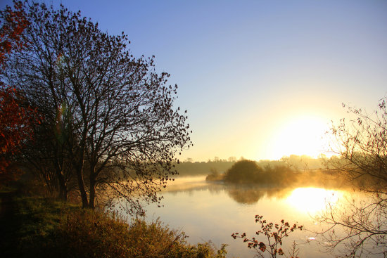 Early morning by the Trent