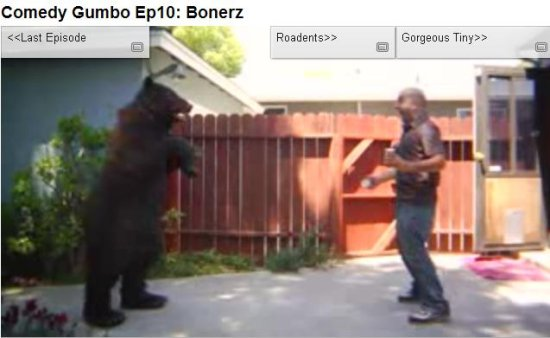 trained bear bear attack simulation