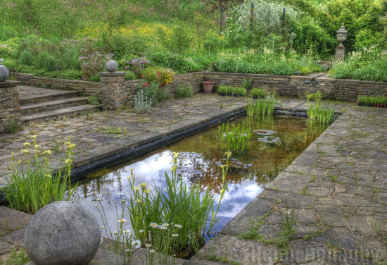 reflectionthursday water pond Harlow Carr