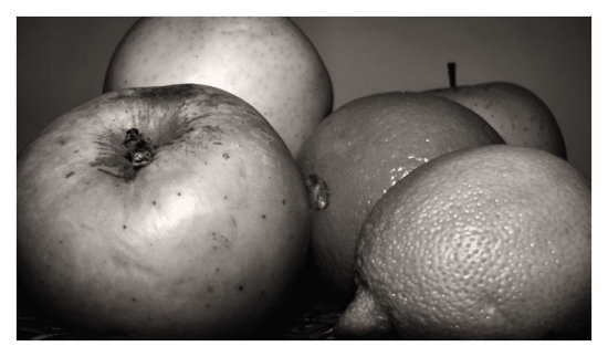 fruits sepia