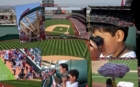 LittleLeagueBaseballTeamDay AnaheimStadeum funfriday Collagefriday