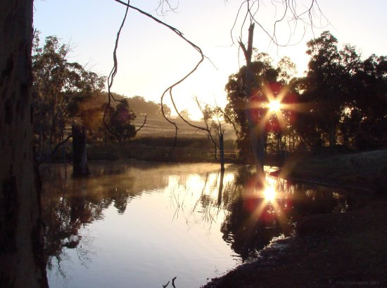 reflectionthursday sunrise fog water farm dam perth hills littleollie