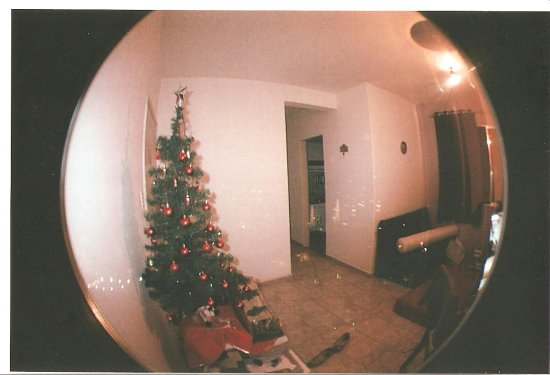 fish eye 2 lomography christmas