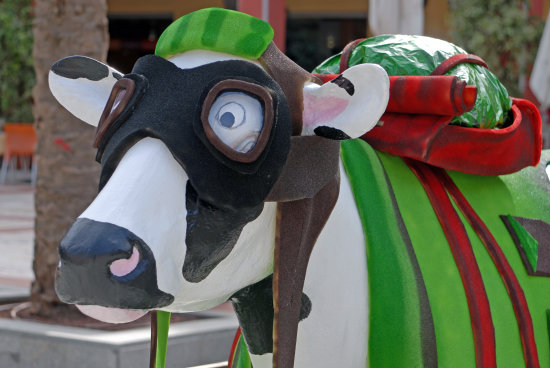art cow fun plaza mayor malaga spain espaa