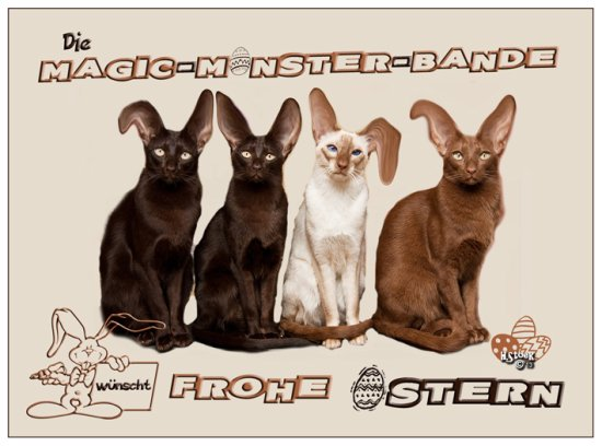 cats easter