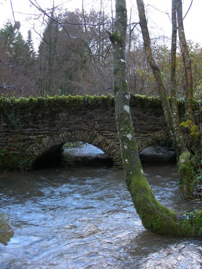 A bridge in Devon.