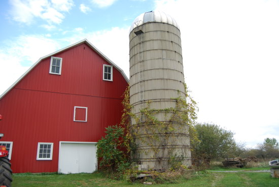 What is it about a bright red barn that makes you grab your camera?