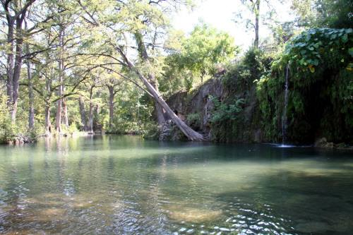 Krause Springs pool.