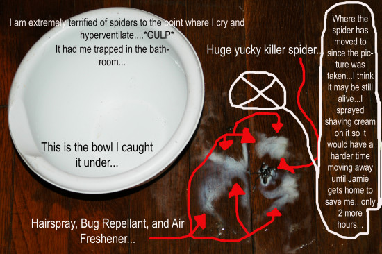 spider trapped me in the bathroom I killed him and Im still terrified