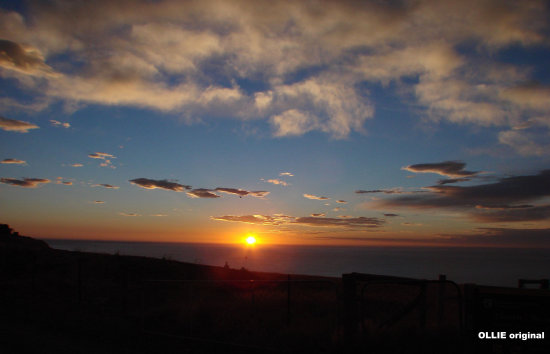 archives sunrise otago coast dunedin littleollie