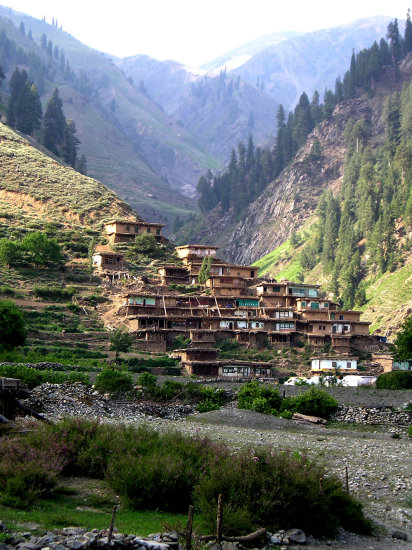 A village in Naran Valley