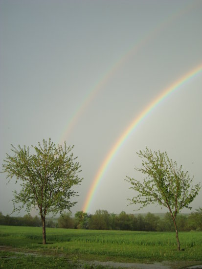 Double rainbow how lucky right