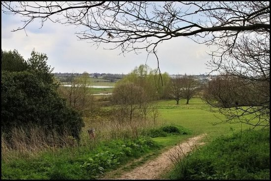 A Essex Countryside path
