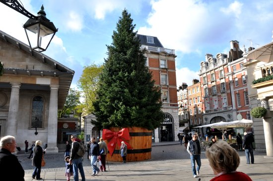 tree christmas covent garden london england nikon d90