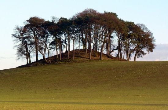 Burial Mound Field Countryside Perthshire Scotland