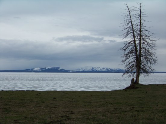 yellowstone lake scenic