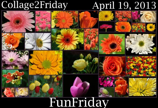 Collage2Friday FunFriday 041913