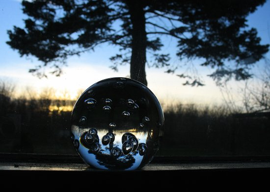 sunset garden tree glassball