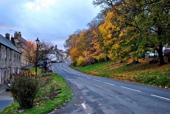 autumn gold rothbury art northumberland village beauty