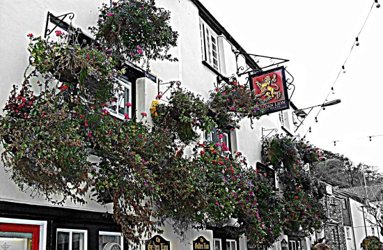 The Golden Lion Hotel Padstow Flowers HDR 2011rob