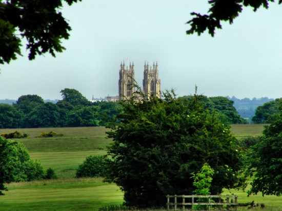 Meadows with the Minster behind