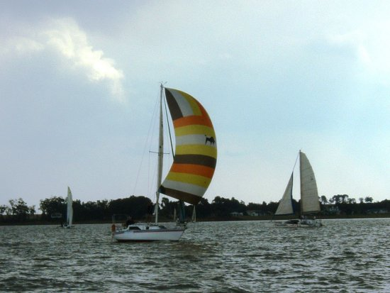Hlaselani with spinnaker 2, 2003.