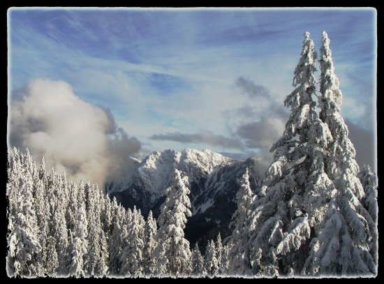mybest2010photofriday dec31 taken this week Cypress mountain BC Canada