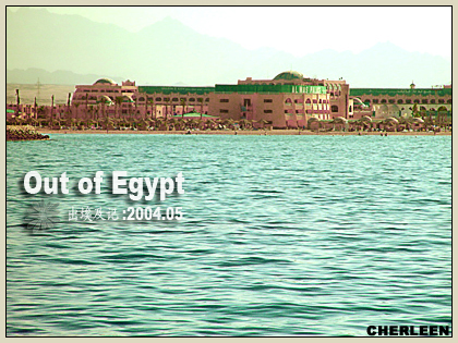 egypt red sea