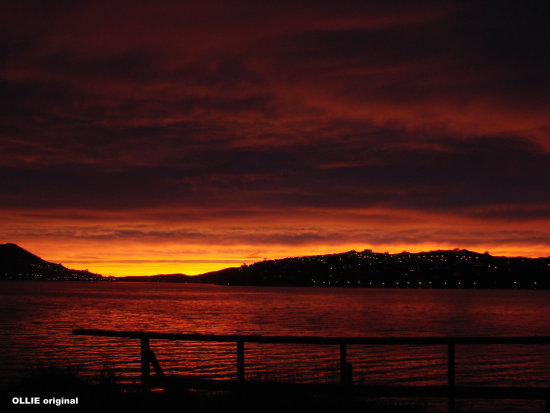 Sunrise Otago Harbour New Zealand