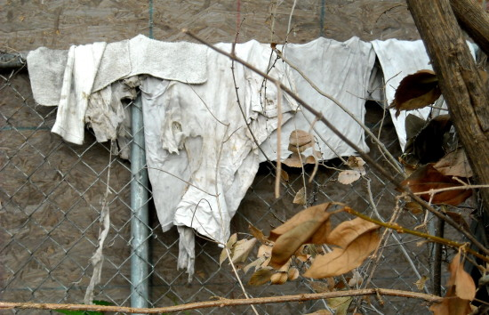 alley rags chainlink fence
