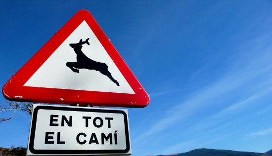 traffic sign catalan pyrennes mountain