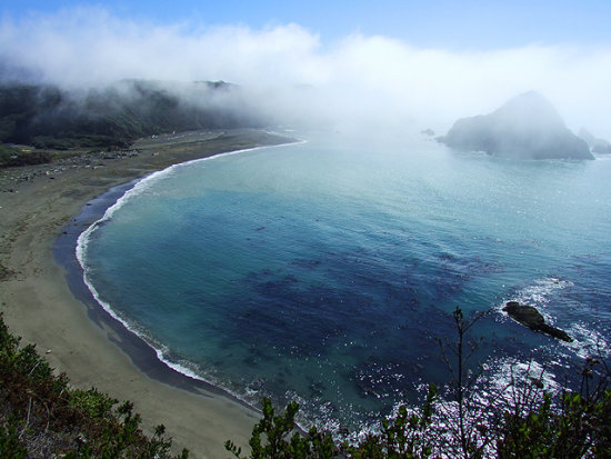 Foggy Cove at Elk, CA, September 27, 2008