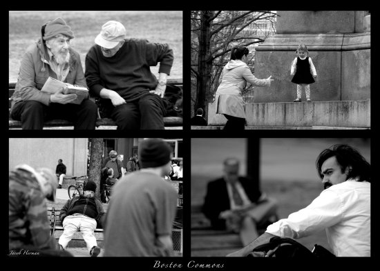 people portrait him her boston park